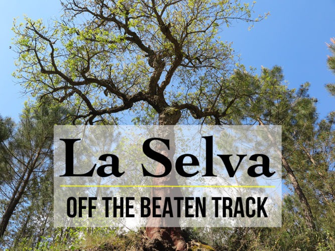 Region of La Selva: Spain Off The Beaten Track at Its Best!