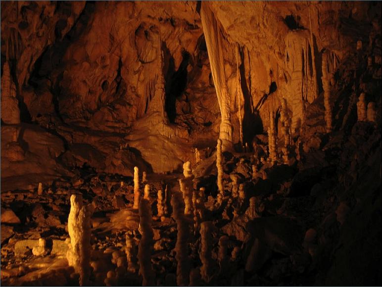 Bear cave Transylvania Romania