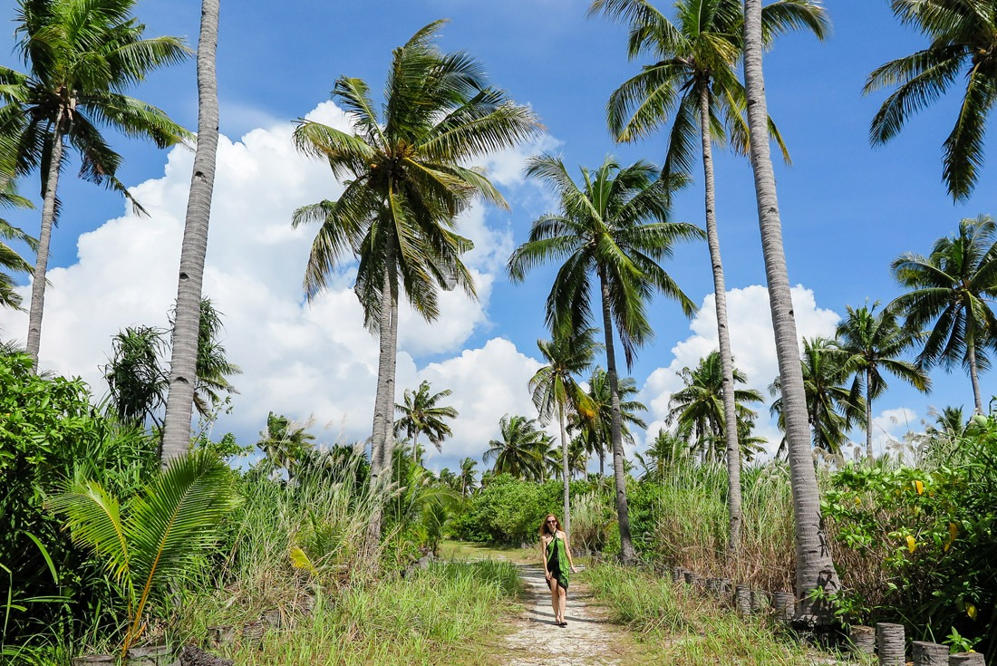 Coconut Alley on Kalanggaman Island, Philippines
