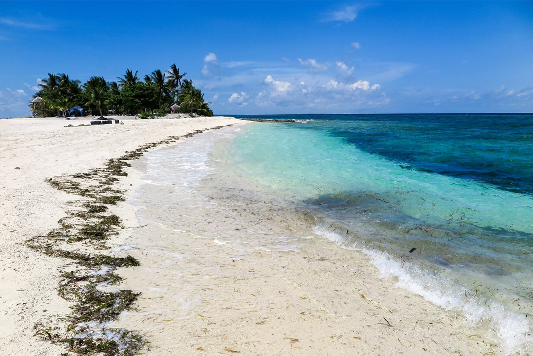 Seaweed in the paradise of Kalanggaman Island, Philippines
