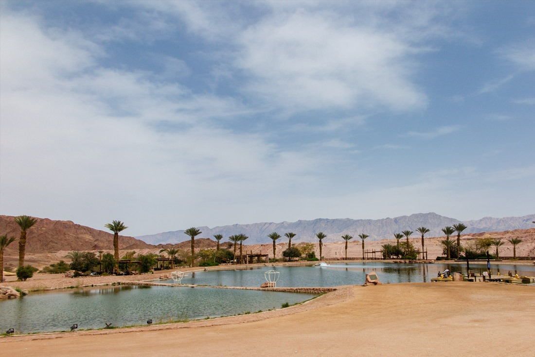 Manmade oasis in Timna Park, Eilat