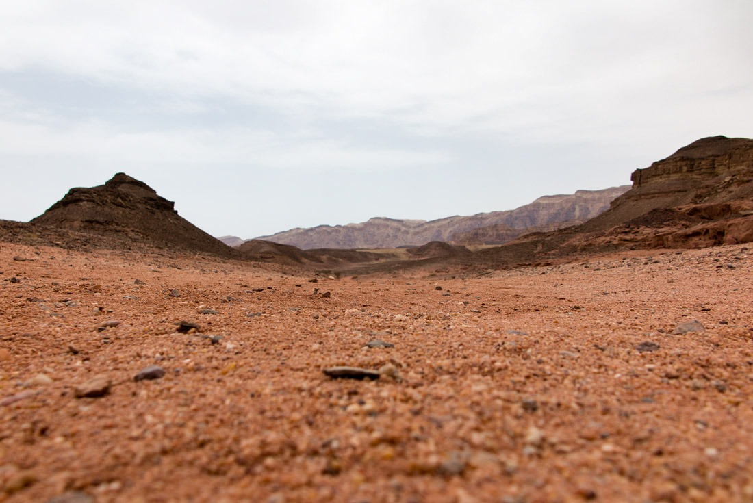 The reddish Mars-like soil in Timna NP, Eilat