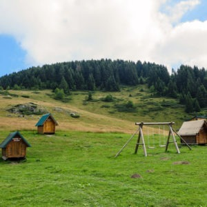 Cute little houses of Katun Dolovi a.k.a. Kam Janketic in Bjelasica Mountains near Biogradsko Jezero NP Montenegro