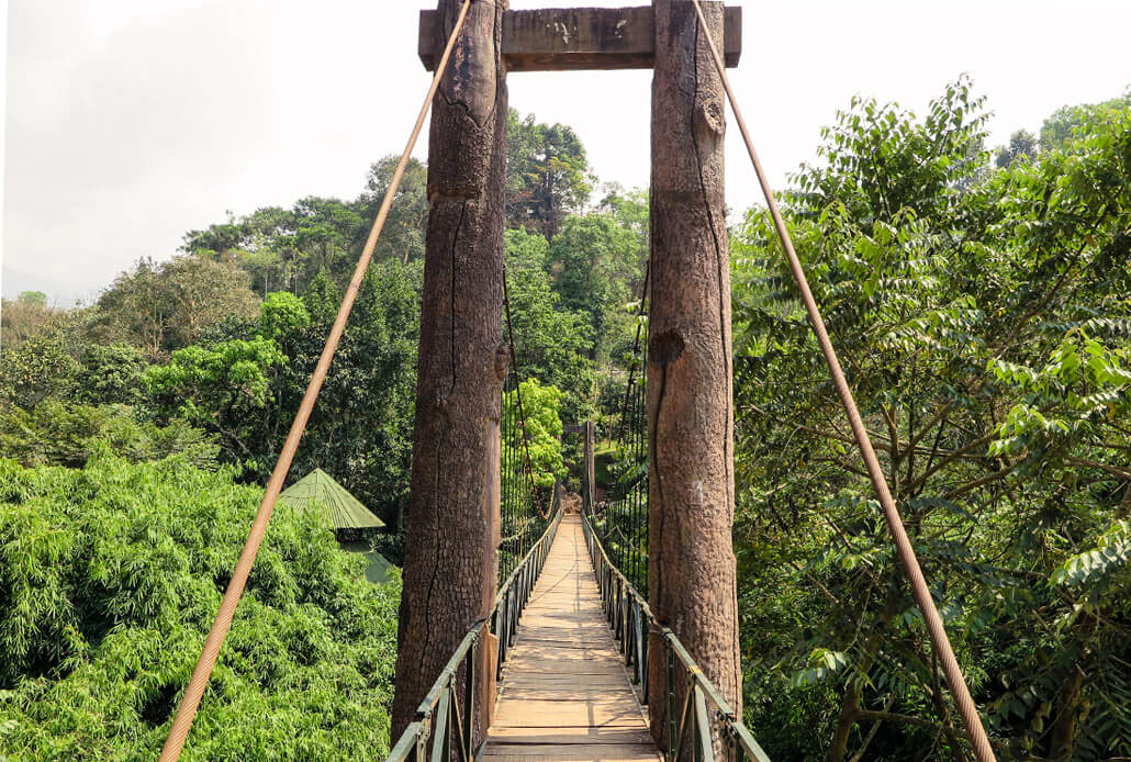 Wooden bridge in Vythiri Village hotel resort, Kerala, India