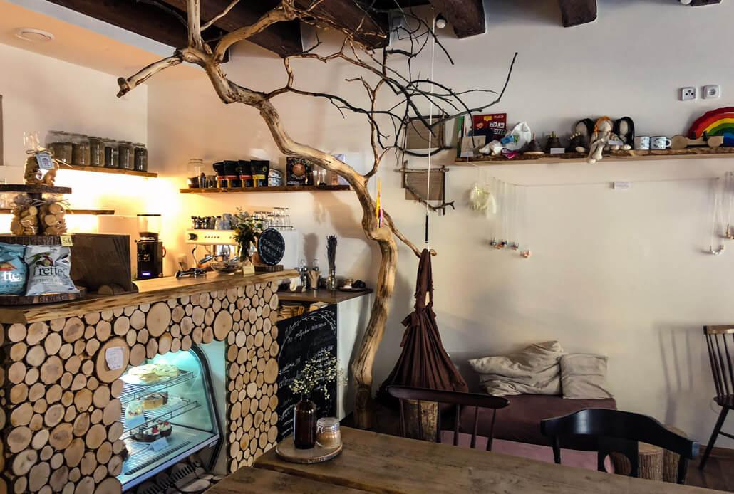 Café V Lese Olomouc