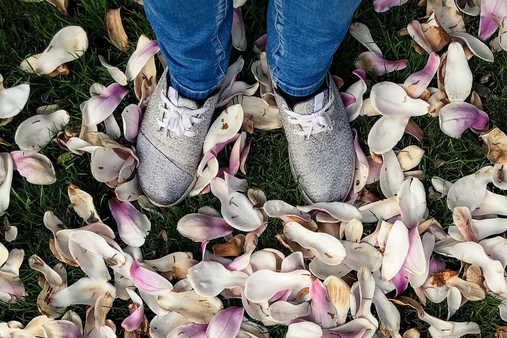 Feet in Toms sneakers on magnolia petals
