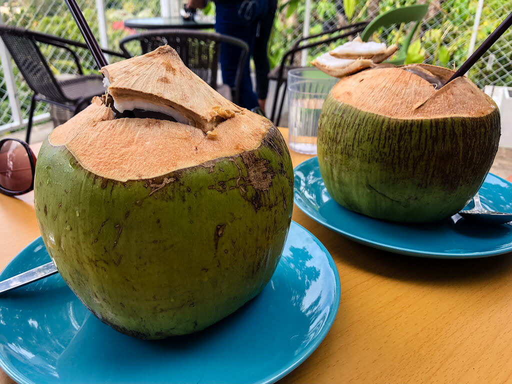 Young coconuts in Thailand