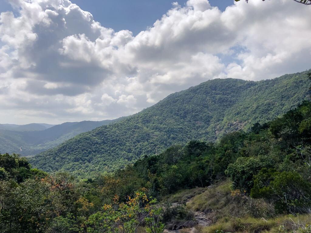 Lush green hills of Koh Phangan Thailand