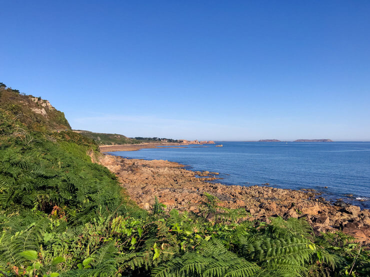 Greenery on the Pink Granite Coast contrasting with the blue ocean