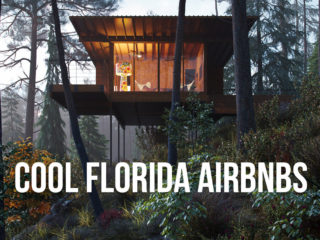 Treehouse in a forest with text overlay: Cool Florida Airbnbs