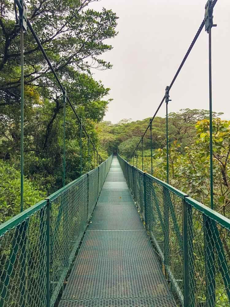 A suspended bridge in Monteverde Reserve Costa Rica