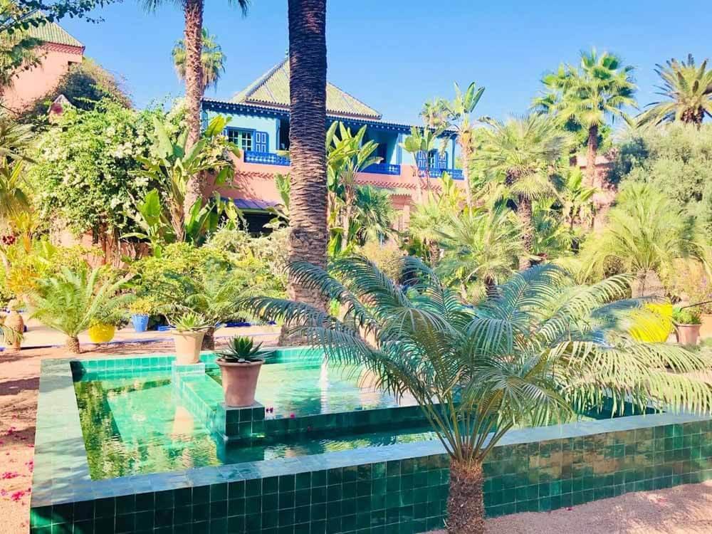 Lush greenery of Majorelle Garden in Marrakech Morocco