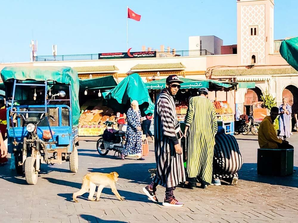 a man with a pet monkey on the main square of Marrakech Morocco
